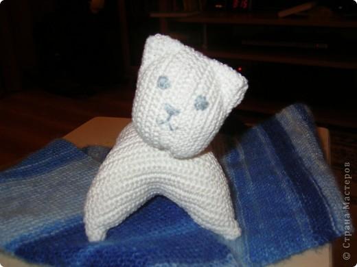 Вот такой котенок связался у меня по МК  http://stranamasterov.ru/node/125157?tid=451  фото 1