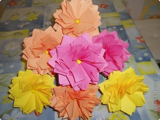 Эти цветы созданы благодаря замечательному МК allasol http://stranamasterov.ru/node/95830 ко дню учителя.  фото 2