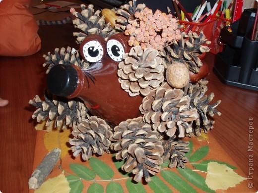 Этот ёжик из сосновых шишек сделан для выставки в детском саду. Мне очень понравился процесс работы - активно помогали дети. Сбор листьев и шишек - это то, что надо ребятам. фото 1
