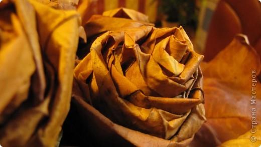 Наступила осень! фото 3