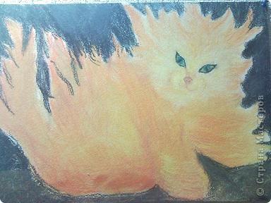 костерок - котенок, по картинке из интернета фото 1
