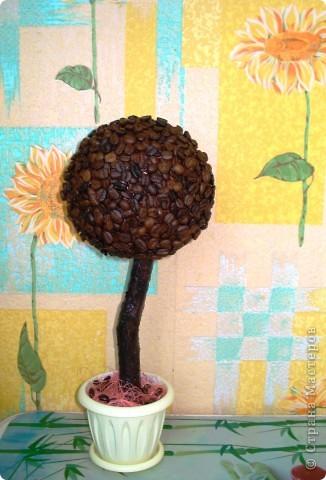 """Вот и у меня """"выросло"""" кофейное дерево! Спасибо всем мастерицам за идеи!!!!!!!!!!"""