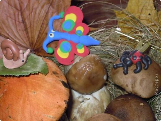 Фею Осень мы придумали с дочками на школьный конкурс поделок из природного материала. Основа тряпочная, использованы осенние цветы, сухая трава, сухие листья, желуди. Внизу фигурки ежиков, цветов сделала дочь из желудей и пластилина. фото 11