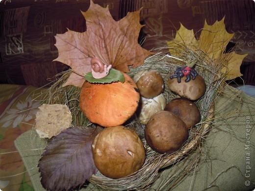 Фею Осень мы придумали с дочками на школьный конкурс поделок из природного материала. Основа тряпочная, использованы осенние цветы, сухая трава, сухие листья, желуди. Внизу фигурки ежиков, цветов сделала дочь из желудей и пластилина. фото 10
