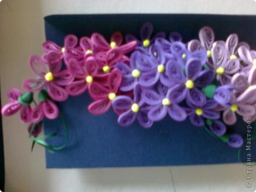 Добрый день дорогие мастерицы!!! В стране мастеров фиалковое настроение)))) Все решили обзавестись этими милыми цветочками. Вот и себе накрутила. фото 2