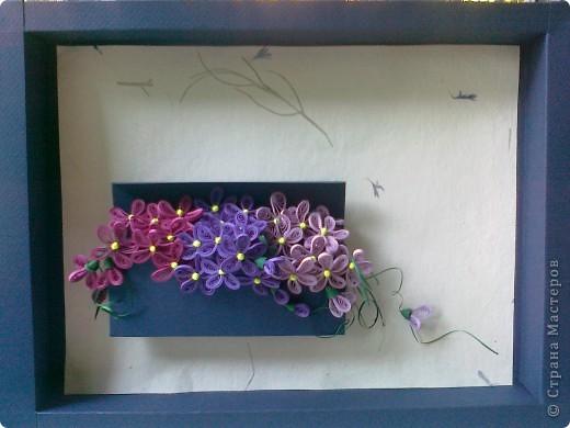 Добрый день дорогие мастерицы!!! В стране мастеров фиалковое настроение)))) Все решили обзавестись этими милыми цветочками. Вот и себе накрутила. фото 1