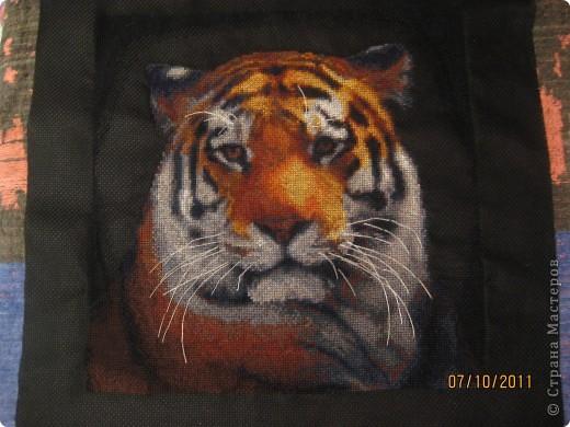 Этот тигруля поехал оформляться в рамку. Делала с большой любовью, мамочке в подарок.