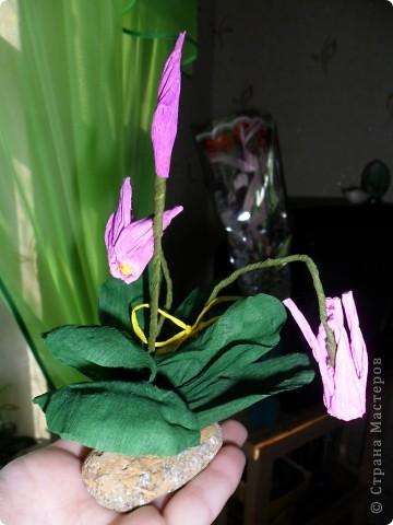 Подарки фото 1