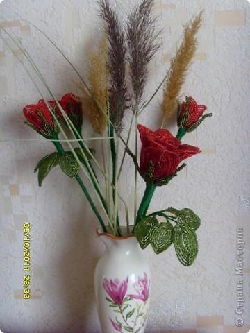 букет роз фото 6