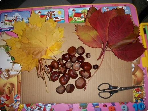 Вот такая гусеница получилась у моей дочки. Ей 3 годика. На праздник осени в садике сказали сделать поделку из природного материала. фото 2