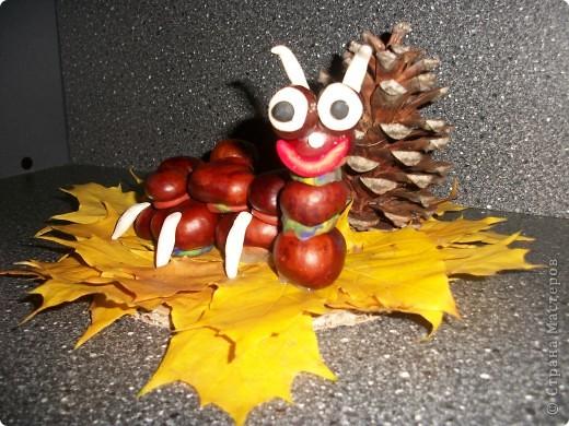 Вот такая гусеница получилась у моей дочки. Ей 3 годика. На праздник осени в садике сказали сделать поделку из природного материала. фото 1
