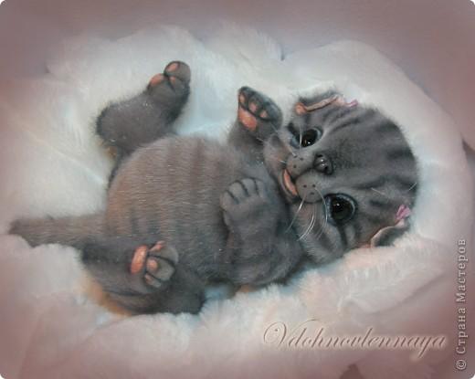 Котёнок    Весёлый серенький котёнок  Живёт у нас почти с пелёнок.  Любитель кушать и играть,  Любитель шёрстку облизать.   Он вверх залазит по ковру  И спит на солнышке в жару,  Он перед сном или едой   Урчит, как будто заводной.   Он на машине разъезжает  И с нами дачу посещает,  Он ловит бабочек и мух,  За галкой мчится во весь дух!   По дому ходит страшно важный,   На встречных всех глядит отважно.  Гроза тарелок, чашек, штор –  Молочный маленький мотор!   Часок подремлет безмятежно  И вдруг толкает лапкой нежной -  Мол, я - малыш, а ты – большой,  Вот и займись игрой со мной!   Александр Щербань фото 3