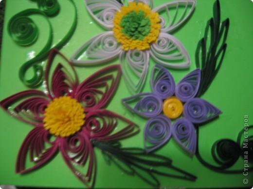 первые цветочки, но клей видно на цветном картоне. Использовала клей ПВА фото 1