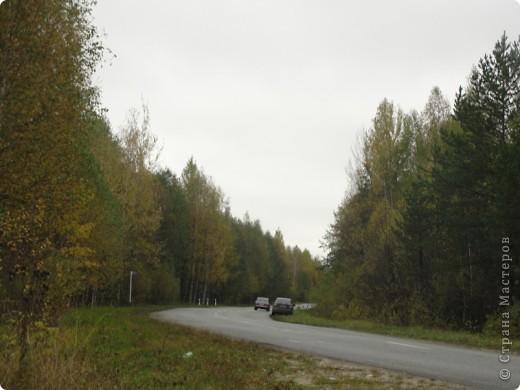 В те выходные было пасмурно, в лес мне ехать не хотелось, но я решила поехать, взяла с собой ноутбук и модем - если что, посижу в машине.   В дороге на заднем сидении сделала макияж и прическу.Это хорошо отвлекало от неприятных ощущений.  В ту местность в лес мы едем впервые. Леса почти всё время по обе стороны от дороги, чередуясь пролесками и деревнями. Очень красиво! И часто-часто стоящие машины около трассы - тоже за грибами приехали.  фото 1