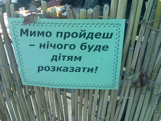 Покровская ярмарка в Запорожье фото 10
