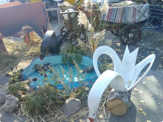 Покровская ярмарка в Запорожье фото 9