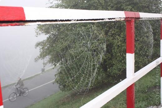 приезжайте в Крaков осенью... поездом интерсити (смотрите в окно, по дороге красивые пейзажи - всего 3 часа) снимите комноту в любом отэле, не важно в каком, вы не проведете там много времени... потом... отправтесь на замок... фото 10
