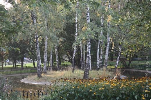 приезжайте в Крaков осенью... поездом интерсити (смотрите в окно, по дороге красивые пейзажи - всего 3 часа) снимите комноту в любом отэле, не важно в каком, вы не проведете там много времени... потом... отправтесь на замок... фото 26