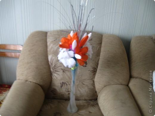 Мои любимые лилии фото 1
