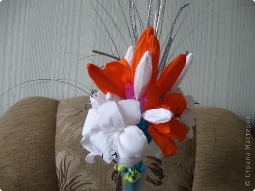 Мои любимые лилии фото 2