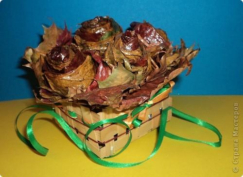 Накануне Дня Учителя с ребятами пробовали делать розы из кленовых листьев по Мастер-классу Т.Н.Просняковой http://stranamasterov.ru/node/2168 И вот подарки: этот букет роз от Марины Видяковой, 5 класс. фото 5