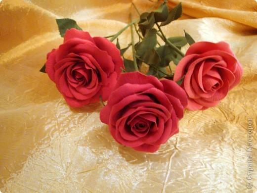 Розы лепила из Деко, тренируюсь пока на форме. Но розы из ХФ и пластики ему подобной нравятся больше. Еще очень хочеться научиться подкрашивать лепестки и листочки. Тогда цветы будут более натуральные. Но пока вот так. фото 5