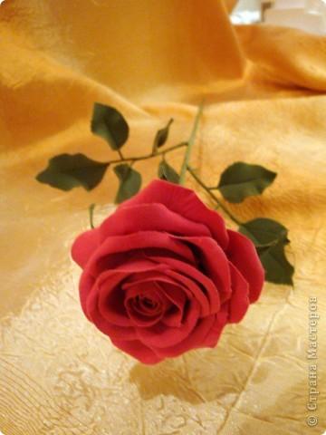 Розы лепила из Деко, тренируюсь пока на форме. Но розы из ХФ и пластики ему подобной нравятся больше. Еще очень хочеться научиться подкрашивать лепестки и листочки. Тогда цветы будут более натуральные. Но пока вот так. фото 2