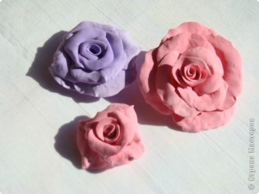 Отобрала пластику у ребёнка и налепила цветуёчков...мои первые розы. фото 1