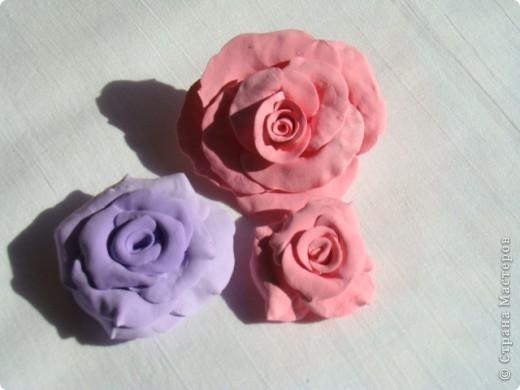 Отобрала пластику у ребёнка и налепила цветуёчков...мои первые розы. фото 2