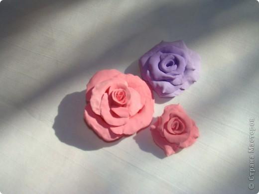 Отобрала пластику у ребёнка и налепила цветуёчков...мои первые розы. фото 3