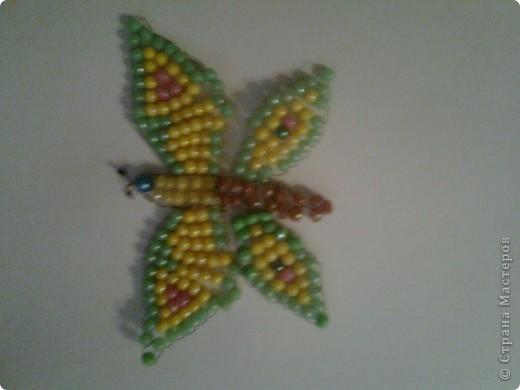 Бабочка=))) фото 1