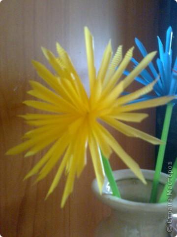 Случайно в магазине наткнулась на разноцветные трубочки. В голове сразу  возникли  тысяча идей!!! Но без цветов, ну ни как.Вот такие цветные астрочки  у меня получились.У синей самые длинные лепестки. фото 3