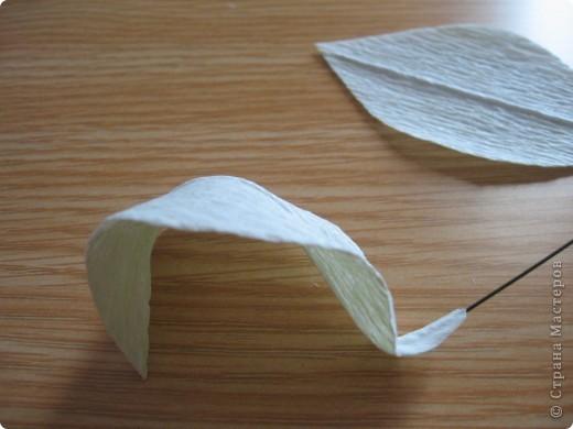 Мастер-класс Свит-дизайн День учителя Моделирование конструирование Сладкий букет Белые лилии + МК Бумага гофрированная фото 9