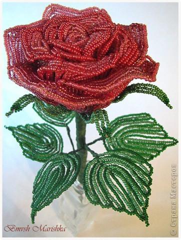"""Я сплела свою розочку в совместном плетении розы вместе с Василиной -Рая на Конфеткином форуме! Т.к. это первое мое французское плетение, то скажу честно - было сложно - никак не хотели дуги ложится ровненько, но я их победила! Конечно есть недочеты, но я очень довольна и мне моя """"Скромница"""" очень нравится! Высота розочки - 37см, диаметр цветочка - 10см. В лепестках использовала три цвета бисера. фото 2"""