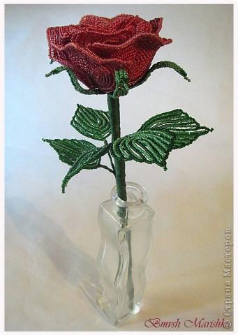 """Я сплела свою розочку в совместном плетении розы вместе с Василиной -Рая на Конфеткином форуме! Т.к. это первое мое французское плетение, то скажу честно - было сложно - никак не хотели дуги ложится ровненько, но я их победила! Конечно есть недочеты, но я очень довольна и мне моя """"Скромница"""" очень нравится! Высота розочки - 37см, диаметр цветочка - 10см. В лепестках использовала три цвета бисера. фото 7"""