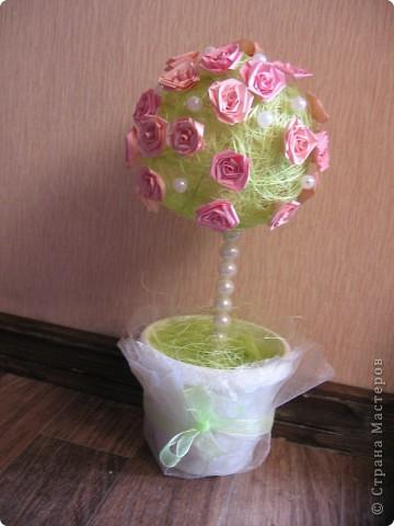 Горшочек роз фото 2