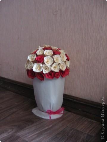 Горшочек роз фото 3