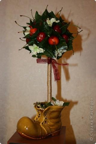 Черешневое деревце на юбилей очень отзывчивой и замечательной женщине.  фото 1