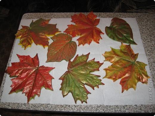 Последняя порция осенних листочков фото 1