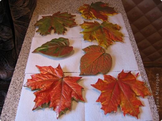Последняя порция осенних листочков фото 2