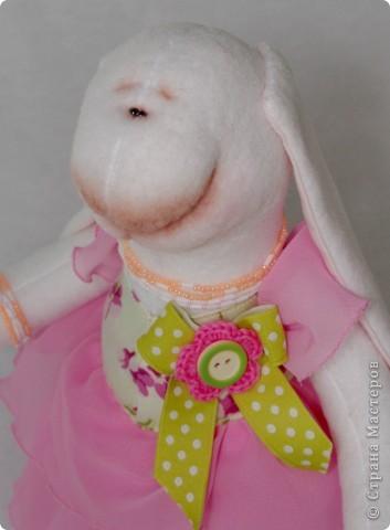 Розовая зайка фото 1