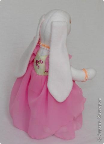 Розовая зайка фото 3