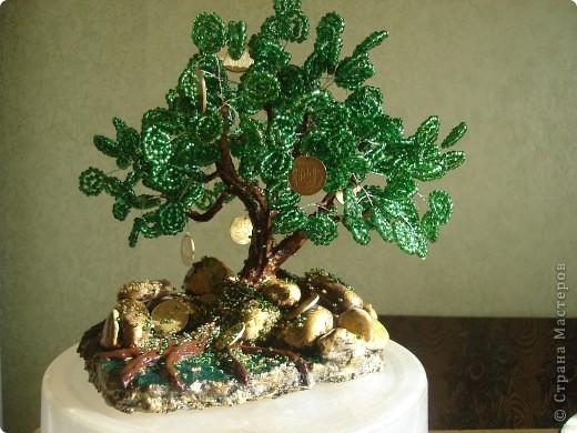 Еще одно денежное дерево фото 1