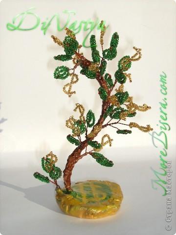 Дерево Доллар от DiNastya