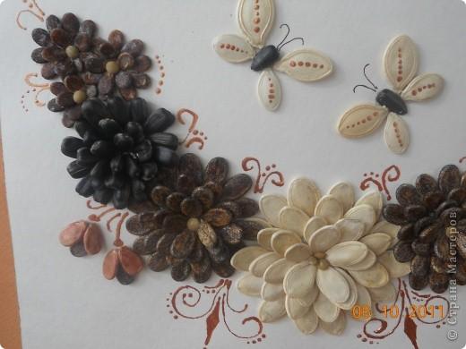"""Вот такое панно мы сделали с Полиной. Цветы из семян тыквы, арбуза и подсолнечника. Клеили на ПВА и на """"Мастер"""" для потолочной плитки. Украшали контуром """"бронза"""". Полина клеила цветы самостоятельно, я дорисовывала контуром и конечно изначально помогла с композицией.  фото 2"""