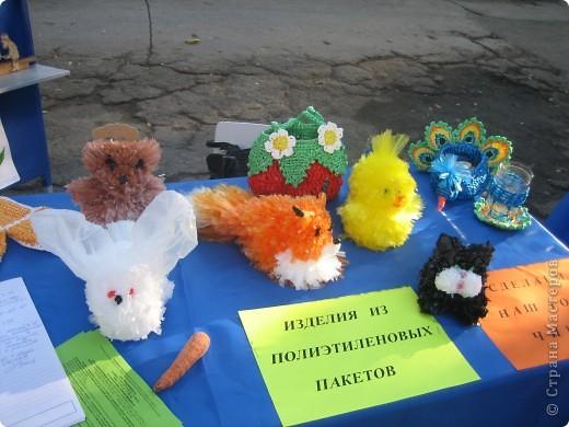 5 игрушек из полиэтиленовых пакетов украсили нашу выставку. фото 1