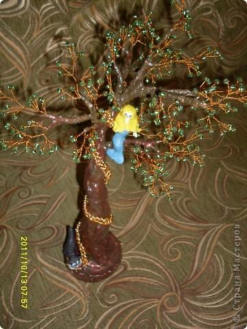 у лукоморья дуб зеленый фото 2
