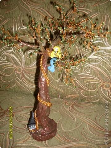 у лукоморья дуб зеленый фото 1
