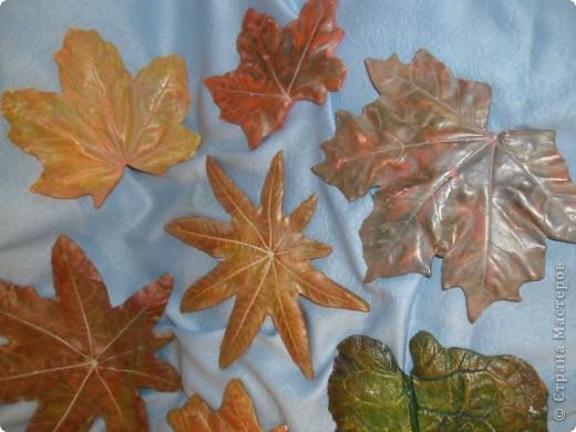 Осенний листопад фото 3