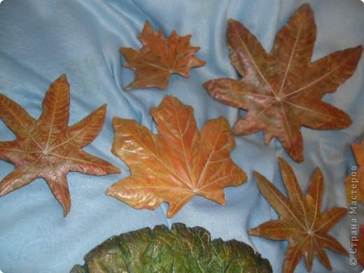 Осенний листопад фото 4